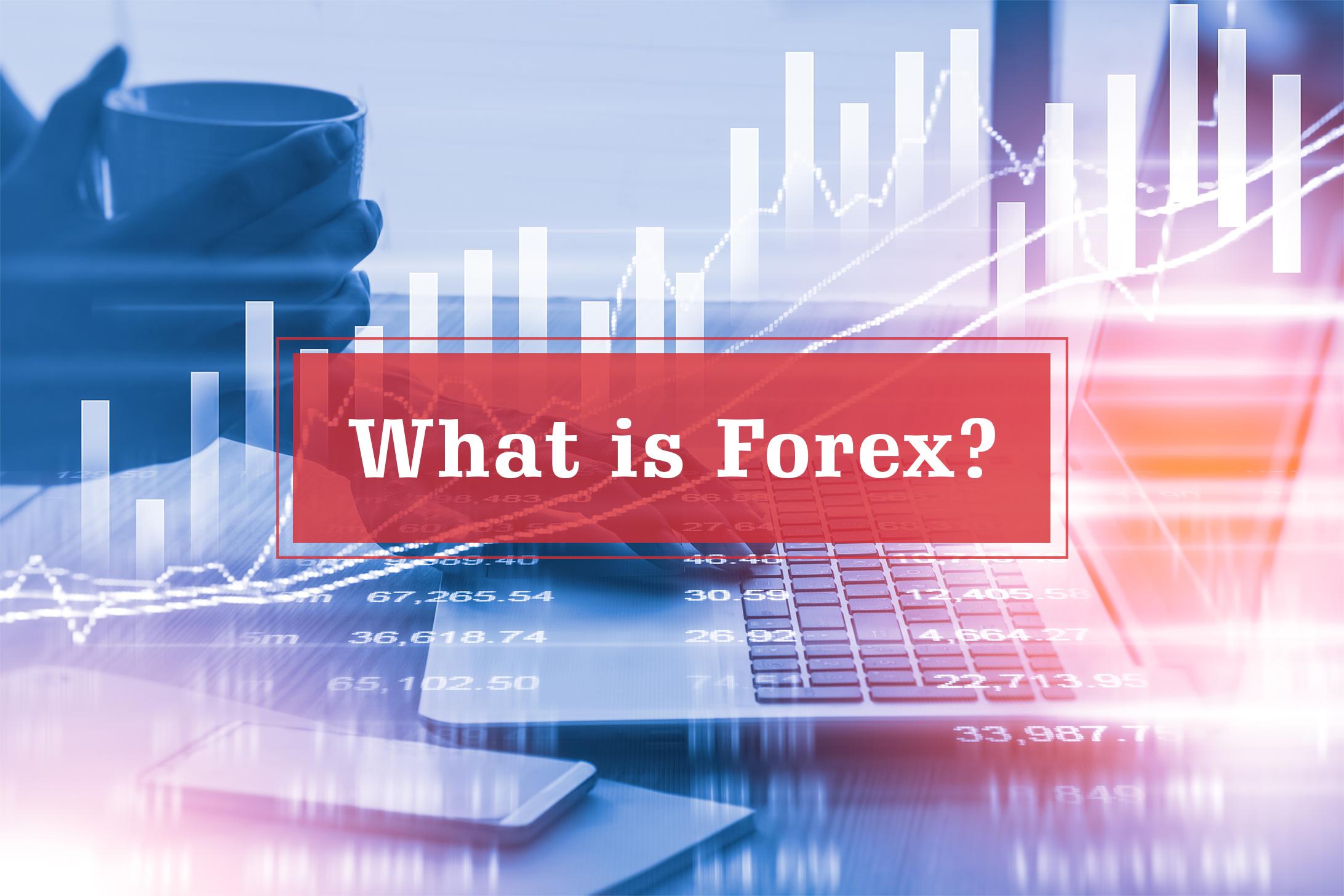 Best forex algo platform: Consultor forex